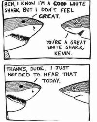 Dude, Memes, and Shark: BEN, I KNOW IM A GOOD WHITE  SHARK, BUT I DON'T FEEL  IIGREAT.  YOURE A GREAT  WHITE SHARK,  KEVIN.  THANKS, DUDE. I JUST  NEEDED TO HEAR THAT  TODAY. Motivational Shark 🦈
