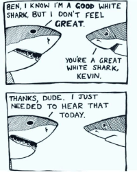 Dude, Shark, and Good: BEN, I KNOW lM A GOOD WHITE  SHARK, BUT I DONT FEEL  GREAT.  YOURE A GREAT  WHITE SHARK,  KEVIN  THANKS, DUDE. I TUST  NEEDED TO HEAR THAT  WTODAY. You're a great white shark, Kevin.