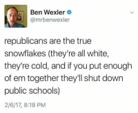 Memes, True, and White: Ben Wexler  @mrbenwexler  republicans are the true  snowflakes (they're all white,  they're cold, and if you put enough  of em together they'll shut down  public schools)  2/6/17, 8:18 PM