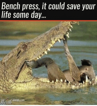 😂😂😂: Bench press, it could save your  life some day...  000. 😂😂😂