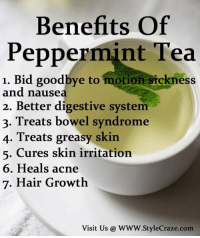 Memes, Greasy, and 🤖: Benefits Of  Peppermint Tea  1. Bid goodbye to motion sickness  and nausea  2. Better digestive system  3. Treats bowel syndrome  4. Treats greasy skin  5. Cures skin irritation  6. Heals acne  7. Hair Growth  Visit Us WWW. Style Craze com https://t.co/NyljMG1MK7