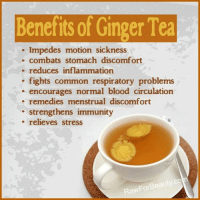 BENEFITS OF GINGER TEA www.rawforbeauty.com: Beneits of Ginger Tea  Impedes motion sickness  combats stomach discomfort  reduces inflammation  . fights common respiratory problems  . encourages normal blood circulation  remedies menstrual discomfort  strengthens immunity  . relieves stress  RawForBeauty.co BENEFITS OF GINGER TEA www.rawforbeauty.com