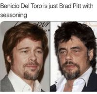 Benicio Del Toro, Brad Pitt, and Can: Benicio Del Toro is just Brad Pitt with  seasoning Cant be unseen .