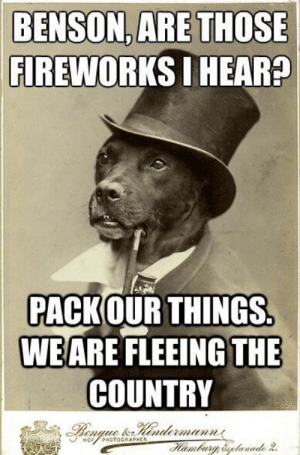 Old Money Dog during July 4th: BENSON, ARE THOSE  FIREWORKS I HEAR?  PACKOUR THINGS.  WEARE FLEEING THE  COUNTRY  Bengue &.Hendermanns  ambury &planade 2.  HOFPHOTOGRAPHEN Old Money Dog during July 4th