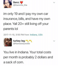 Lol, Memes, and Parents: Benz.  @Damnlts_Kia  im only 19 and I pay my own car  insurance, bills, and have my own  place. Yall 20+ still living off your  parents lol  2017-11-10, 3:50 PM from Indiana, USA  turkey leg  @Namastaywoke  You live in Indiana. Your total costs  per month is probably 2 dollars and  a sack of corn 😂Damn this is great