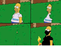 Better version of the Homer meme: Bernie Better version of the Homer meme