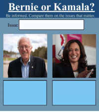 new template for the election comparison meme: Bernie or Kamala?: Bernie or Kamala?  Be informed. Compare them on the issues that matter.  Issue new template for the election comparison meme: Bernie or Kamala?