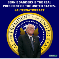 Bernie Sanders, Memes, and Bernie Sander: BERNIE SANDERS IS THE REAL  PRESIDENT OF THE UNITED STATES.  #ALTERNATIVE FACT  ENT  OF THE  SAVE MAIN ST #AlternativeFact