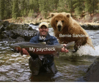 (F) Fresh meme from a member of our private Facebook group (The BCL Republic).: Bernie Sanders  My paycheck (F) Fresh meme from a member of our private Facebook group (The BCL Republic).