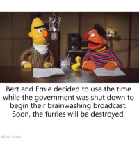 "Dank, Funny, and Meme: Bert and Ernie decided to use the time  while the government was shut down to  begin their brainwashing broadcast.  Soon, the furries will be destroyed  @bert strips ""A good use of their time"" - by 81698 funny dark dank humor reddit bert bertstrips instafunny ernie sesamestreet muppets meme photooftheday"