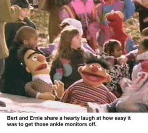 I need to know the secret by StaphSausage MORE MEMES: Bert and Ernie share a hearty laugh at how easy it  was to get those ankle monitors off. I need to know the secret by StaphSausage MORE MEMES