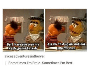 Look Into My Eyes, Ask, and Paper: Bert, have you seen my  waste-paper basket?  Ask me that again,and look  into,myeves  alicesadventuresintherye:  Sometimes I'm Ernie. Sometimes l'm Bert. Ask me that again and look into my eyes.