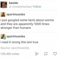 beside  scorpiohumour Follow  sportmuscles  i just googled some facts about worms  and they are apparently 1000 times  stronger than humans  sportmuscles  i read it wrong this isnt true  Source: sportmuscles  135,482 notes that's what the worms want you to think :)