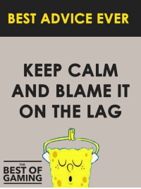 Advice, Video Games, and Best: BEST ADVICE EVER  KEEP CALM  AND BLAME IT  ON THE LAG  THE  BEST OF  GAMING I always do 😉!