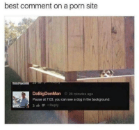 Best, Porn, and Irl: best comment on a porn site  DaBigDonMan 26 minutes ago  Pause at 7:03, you can see a dog in the background.  3 Reply Me_irl