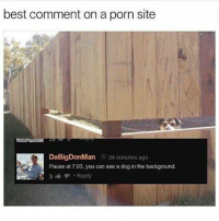 Best, Porn, and Nice: best comment on a porn site  DaBigDonMan o 26 minutes ago  Pause at 7:03, you can see a dog in the background.  3 Reply nice dog
