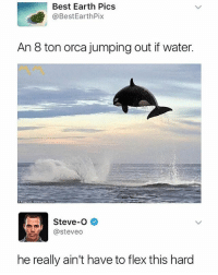 😂😂😂: Best Earth Pics  @BestEarthPix  An 8 ton orca jumping out if water.  Steve-O  @steveo  he really ain't have to flex this hard 😂😂😂