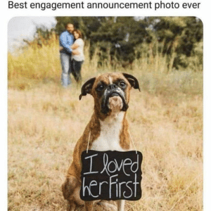 Memes, Best, and Announcement: Best engagement announcement photo ev  oved  her hirst