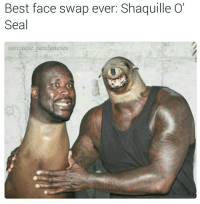 Sometimes it's the simple things.....😂😂😂: Best face swap ever: Shaquille O'  Seal  sarcastic tendencies Sometimes it's the simple things.....😂😂😂