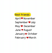Friends, Memes, and Best: Best friends  April November  September July  May December  June August  January October  February March