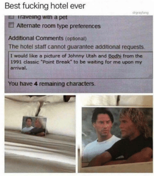 "Dank, Fucking, and Memes: Best fucking hotel ever  drgrayfang  Iraveing witn a pet  Alternate room type preferences  Additional Comments (optional)  The hotel staff cannot guarantee additional requests.  I would like a picture of Johnny Utah and Bodhi from the  1991 classic ""Point Break"" to be waiting for me upon my  arrival  You have 4 remaining characters. Sometimes they even wait for you in bed by dickfromaccounting FOLLOW HERE 4 MORE MEMES."