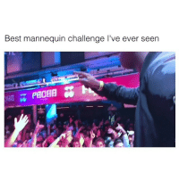 Funny, Mannequin, and Mannequin Challenge: Best mannequin challenge l've ever seen