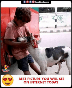 #Humanity: BEST PICTURE YOU WILL SEE  ON INTERNET TODAY #Humanity