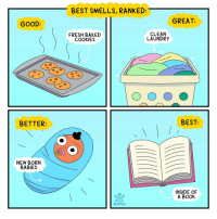 Baked, Books, and Cookies: BEST SMELLS, RANKED:  GREAT:  GOOD:  FRESH BAKED  COOKIES  CLEAN  LAUNDRY  BETTER  BEST:  NEW BORN  BABIES  INSIDE OF  A BOOK  Mike  BUZZFEED Do you agree? (By @hinsonmike and Asia Mclain) . . . . babysmell booksmell books bibliophile sniffer webcomics
