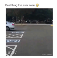 Follow me (@bitchy.code) for more Via: @roypurdy: Best thing I've ever seen  ur  aroy purdy Follow me (@bitchy.code) for more Via: @roypurdy
