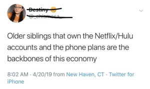 Hulu, Iphone, and Netflix: Bestiny  ehioma  AMPA  Older siblings that own the Netflix/Hulu  accounts and the phone plans are the  backbones of this economy  8:02 AM 4/20/19 from New Haven, CT Twitter for  iPhone truer words cannot be spoken