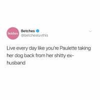 Live, Girl Memes, and Husband: Betches  @betchesluvthis  betches  Live every day like you're Paulette taking  her dog back from her shitty ex-  husband I'm taking the dog, dumbass