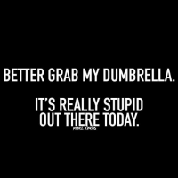 Really Stupid: BETTER GRAB MY DUMBRELLA  IT'S REALLY STUPID  OUT THERE TODAY  REBEL CROus