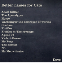 Some better names for cats: Better names for Cats  Adolf Kittler  The Apocalypse  Horse  Warbringer the destroyer of worlds  Graham  Fluffies  Fluffles 2: The revenge  Agent 27  Violent Susan  Mr Fury  The demise  No  Mr Meow tivator  Dave Some better names for cats