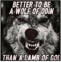 BETTER TO BE  A WOLF OF ODIN  THAN ALAMR OF GOL Woof Woof