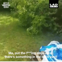 "Dank, Dogs, and Turn Up: BETTER  WITH  SOUND  LAD  BIBLE  Ma, put the f*Mingdogsaa  there's something in the  yard ""MA! PUT THE DOGS AWAY!"" This guy is really not happy to see this cat turn up in his garden again 😂😂  Wilfred Warrior x Michael Rapaport"