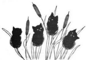 bettertoseeyou:  Fine Crop of Kitties (by LisaGenius) Black Cat, 1896 : bettertoseeyou:  Fine Crop of Kitties (by LisaGenius) Black Cat, 1896