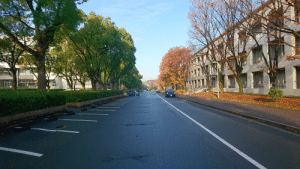 School, On My Way, and Back: [Between Seasons]: took this a while back on Dec. 5th 2016 in Nagoya University on my way to school