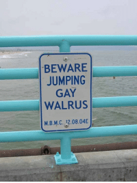 Kids, Fat, and Funny Signs: BEWARE  JUMPING  GAY  WALRUS  M.B.M.C. 12.08.04 I am wet, fat and fabulous