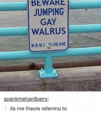 Memes, Tumblr, and Haha: BEWARE  JUMPING  GAY  WALRUS  M.B.M.C. 12.08.04  spankmehardbarry:  its me theyre referring to { funnytumblr textposts funnytextpost tumblr funnytumblrpost tumblrfunny followme tumblrfunny textpost tumblrpost haha}