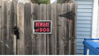 Wild, Dog, and Wild Things: BEWARE  of DOG Where the Wild Things Are