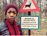 """Deer, Food, and Love: BEWARE OF  FALLING DEER:  Leopards conceal  their unfinished food  in the tops of trees. onlyblackgirl:  blackhipsteraesthetic:  allisonmoon:  That face is priceless.  this is why black people don't fuck around in the wilderness. deer be falling out of trees and shit.   What kinda shit……  I love that there's a warning for falling deer but nothing about """"oh by the way there are LEOPARDS HERE maybe watch out for them too"""