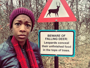 Deer, Food, and Trees: BEWARE OF  FALLING DEER:  Leopards conceal  their unfinished food  in the tops of trees.