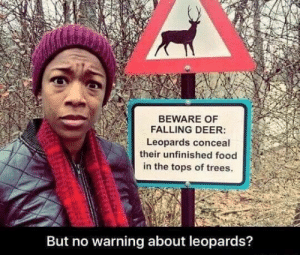 Beware Of: BEWARE OF  FALLING DEER:  Leopards conceal  their unfinished food  in the tops of trees.  But no warning about leopards?
