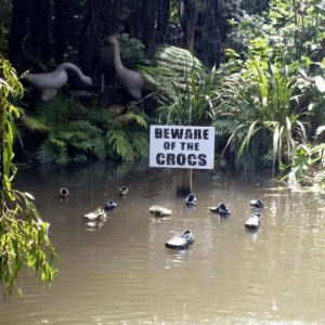 They bite: BEWARE  OF THE  CROCS  OF They bite