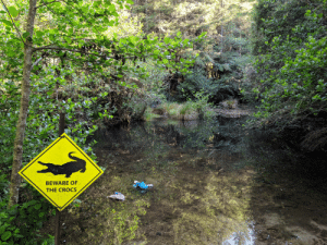 Saw this while riding through a mountain biking trail. (FYI: This is in New Zealand, where there are no actual crocs): BEWARE OF  THE CROCS Saw this while riding through a mountain biking trail. (FYI: This is in New Zealand, where there are no actual crocs)