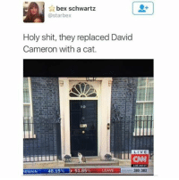 David Cameron, Memes, and 🤖: bex schwartz  @starbex  Holy shit, they replaced David  Cameron with a cat.  IO  LIVE  EMAIN  48.15% D 51.85%  LEAVE  380/382 10 Meowning Street...