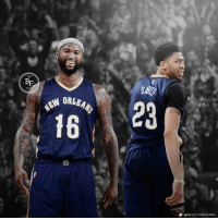 DeMarcus Cousins, Memes, and Nba: BF  ORLEM  23  16  @BBALLFOREVERFB DeMarcus Cousins has officially been traded to the New Orleans Pelicans for a package centered around Buddy Hield, Tyreke Evans, and two First Round Picks. Anthony Davis finally has some help! The Brow and Boogie on one team. Is this the best frontcourt in the NBA?