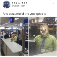 Memes, Best, and 🤖: BGLTGR  @BagelTiger  And costume of the year goes to  13 14 I know I say this a lot, but @BestMemes actually has the best memes 😂