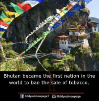Memes, World, and Bhutan: Bhutan became the first nation in the  world to ban the sale of tobacco.  /didyouknowpagel @didyouknowpage