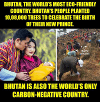 Friends, Memes, and Prince: BHUTAN, THE WORLD'S MOST ECO-FRIENDLY  COUNTRY BHUTAN'S PEOPLE PLANTED  10,08,000 TREESTO CELEBRATE THE BIRTH  OF THEIR NEW PRINCE.  BACK  BENCHERS  CARBON NEGATIVE COUNTRY.